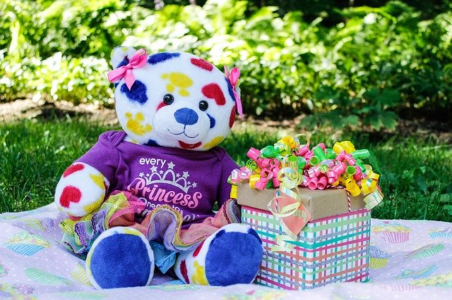 Bear Birthday Teddy Gift Toy  - candidlydana / Pixabay
